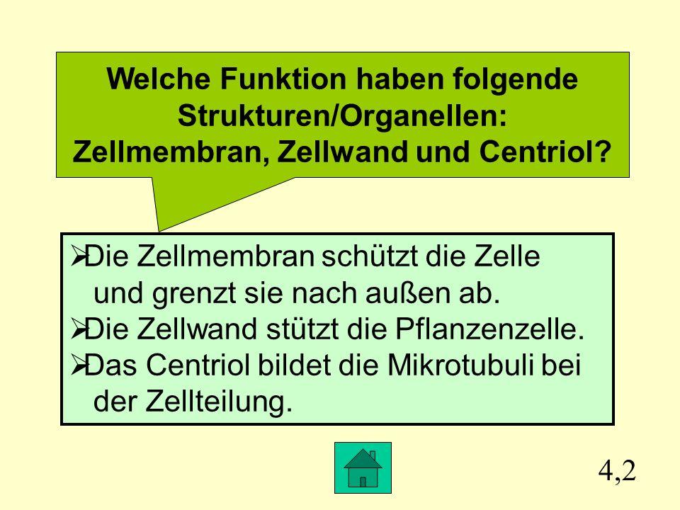 Biologie Zelltheorie – Cytologie – Transport durch die Membran ...