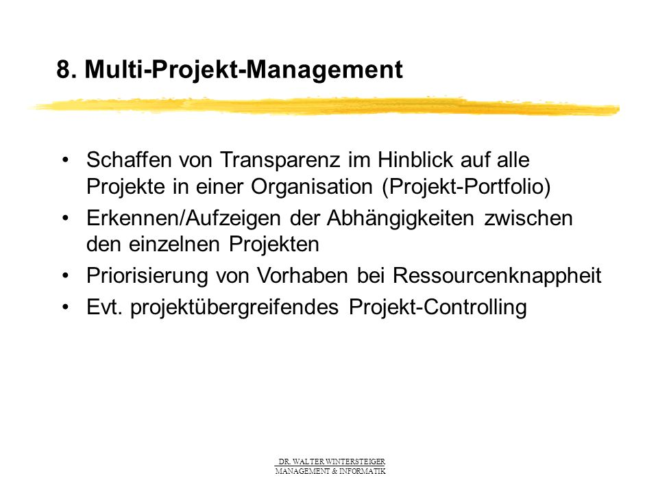 8. Multi-Projekt-Management