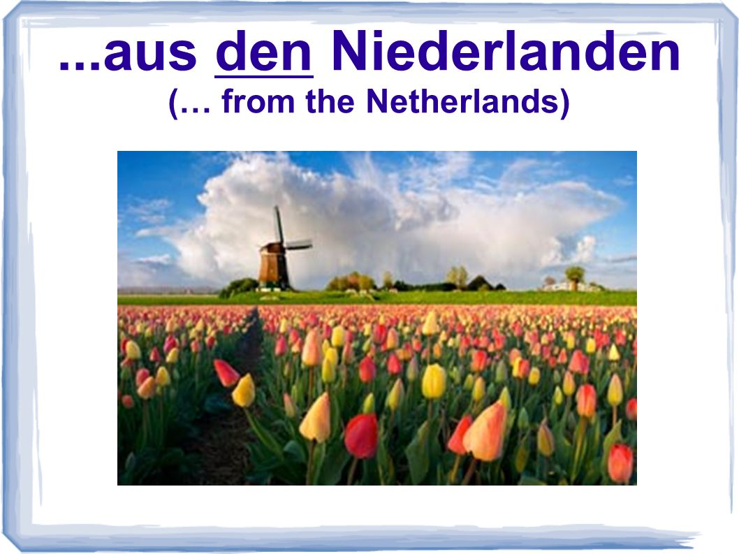 ...aus den Niederlanden (… from the Netherlands)