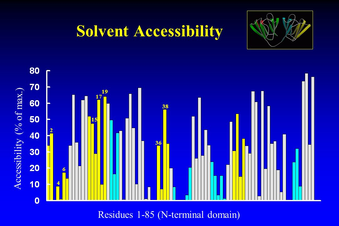 Solvent Accessibility
