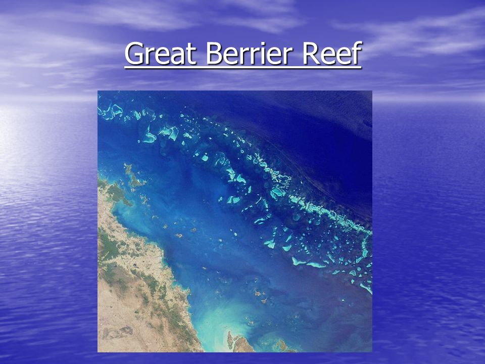 Great Berrier Reef