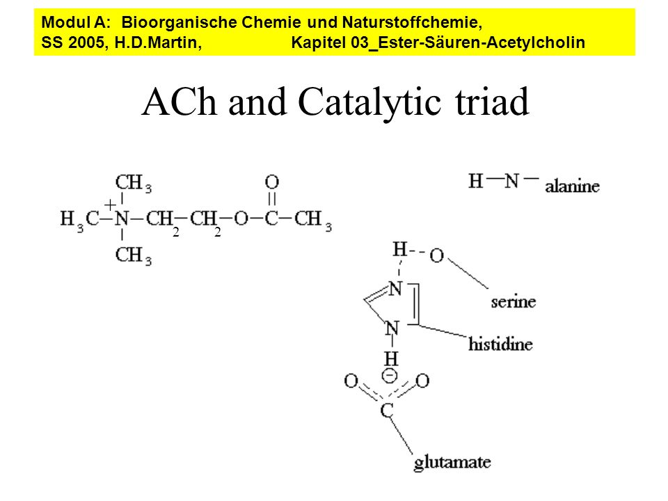 ACh and Catalytic triad
