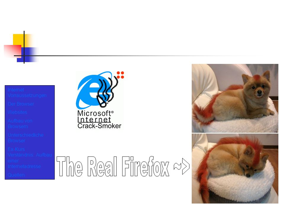 The Real Firefox ~> Internet Vorraussetzungen Der Browser Websites