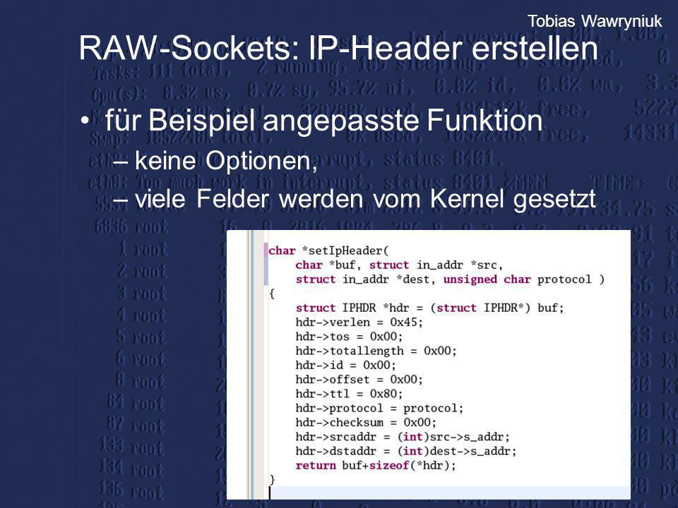 RAW-Sockets: IP-Header erstellen