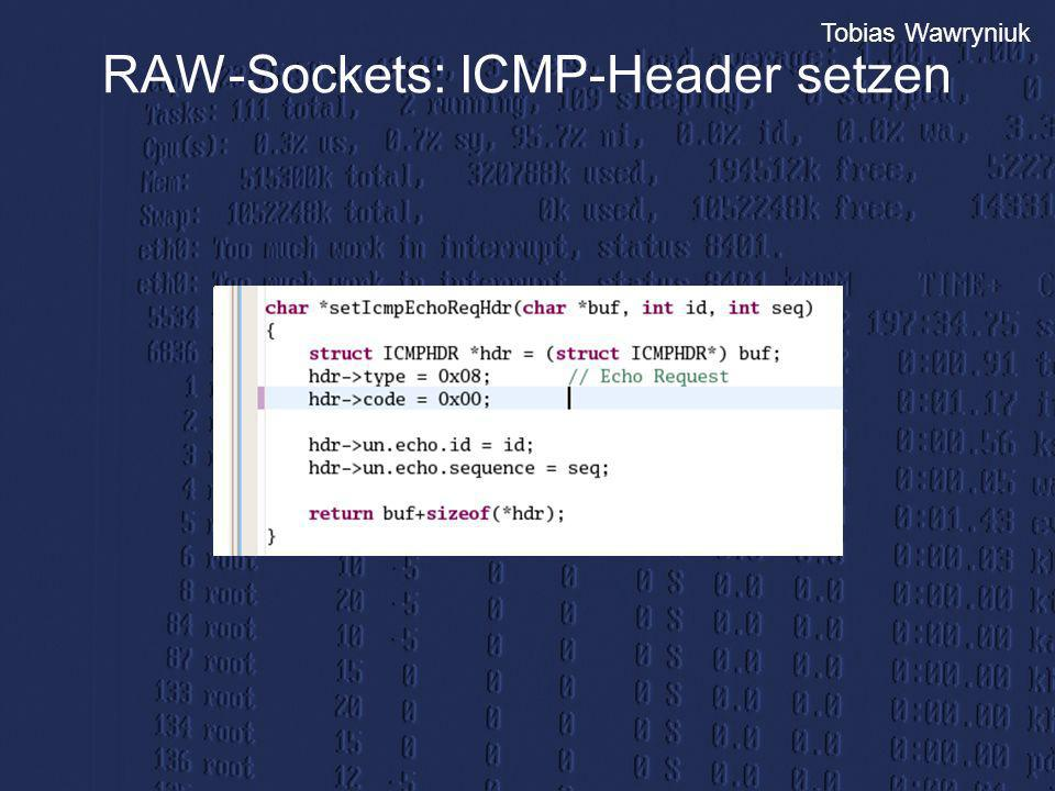 RAW-Sockets: ICMP-Header setzen