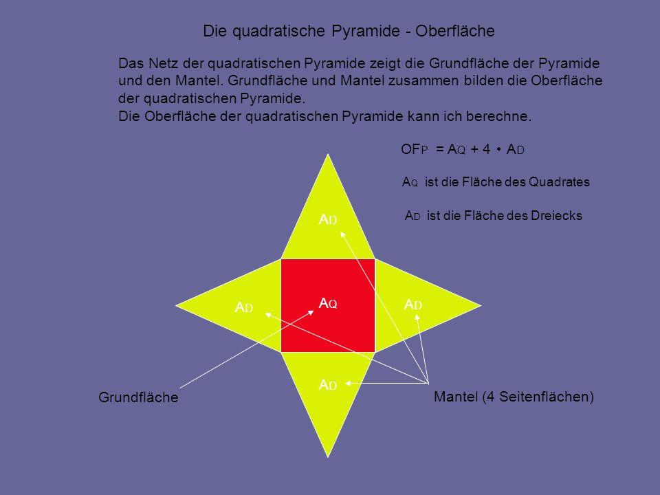 netz pyramide