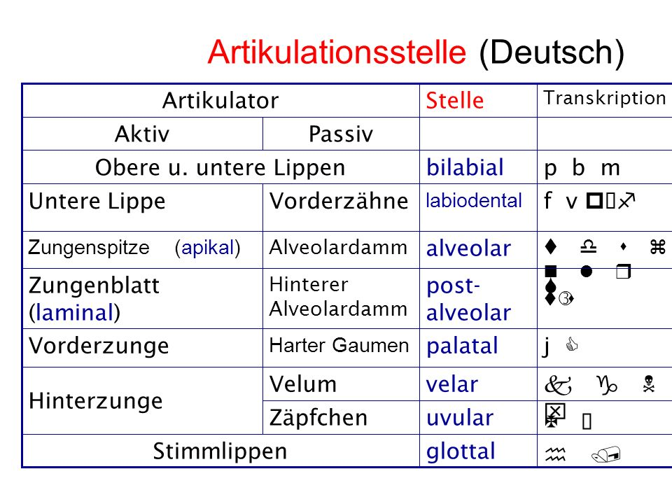 Artikulationsstelle (Deutsch)
