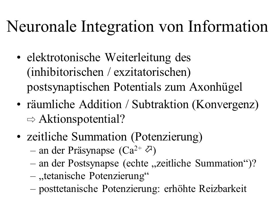 Neuronale Integration von Information