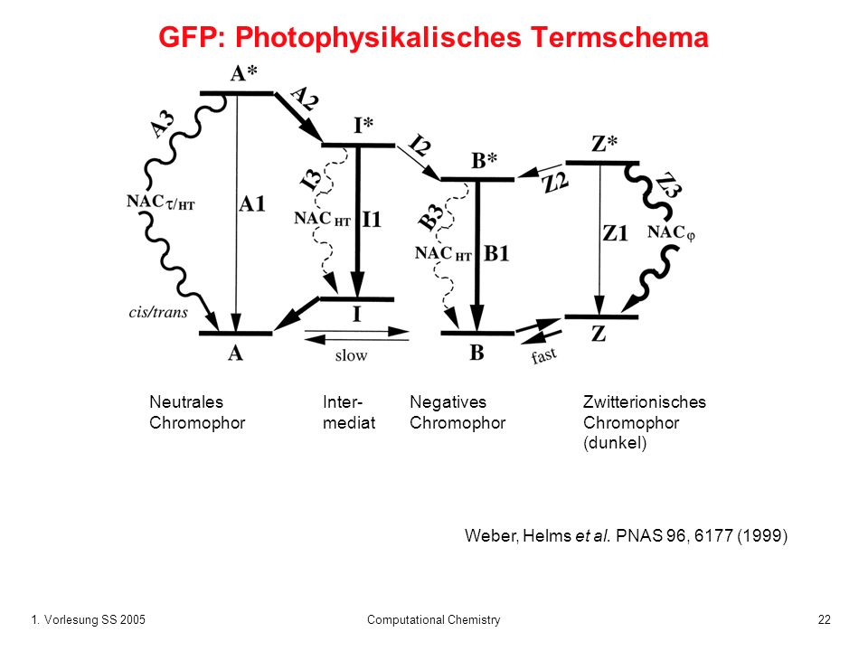 GFP: Photophysikalisches Termschema