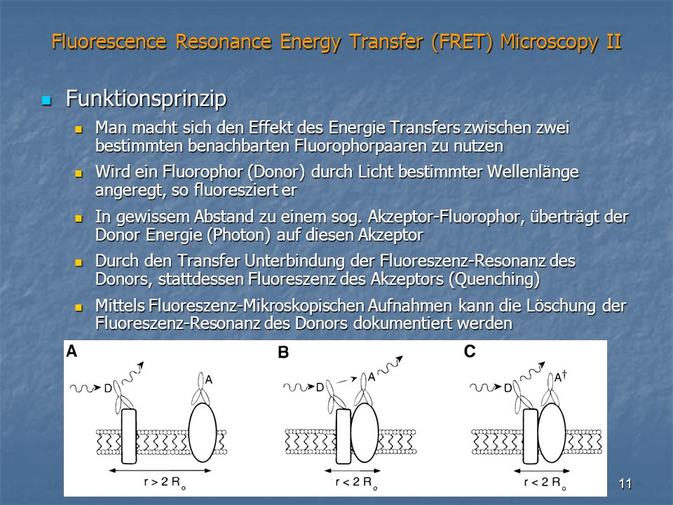 Fluorescence Resonance Energy Transfer (FRET) Microscopy II
