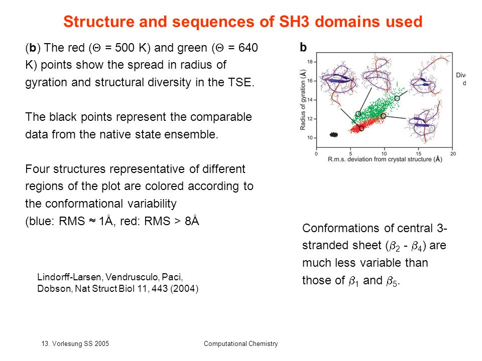 Structure and sequences of SH3 domains used