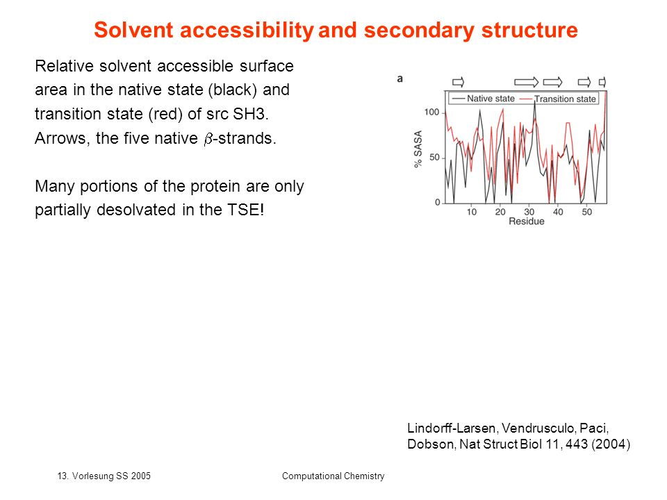 Solvent accessibility and secondary structure