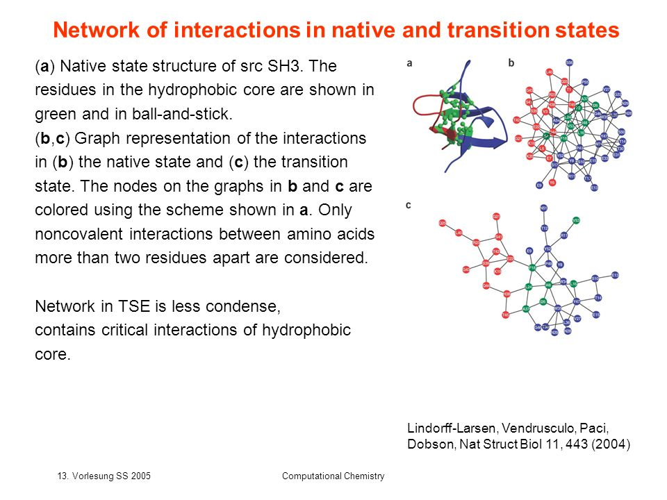 Network of interactions in native and transition states