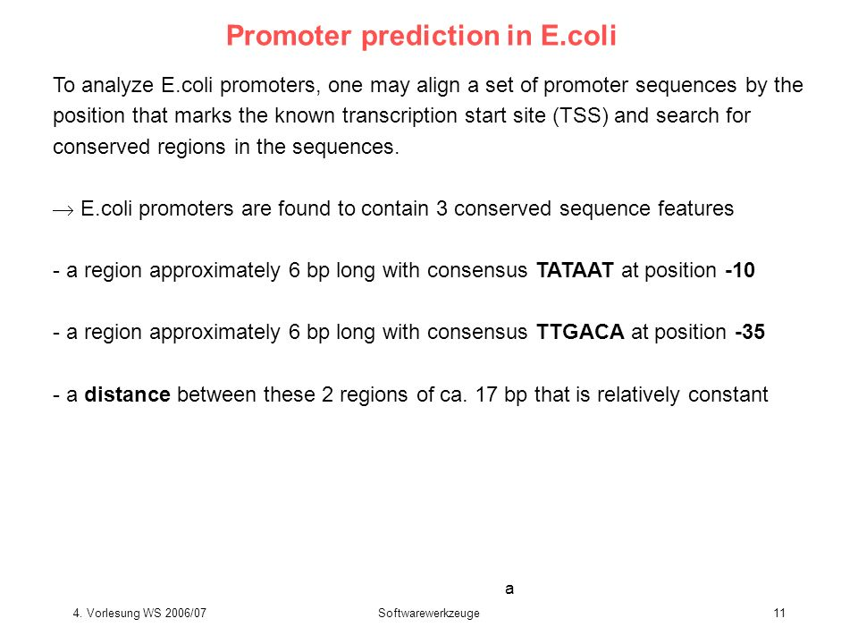 Promoter prediction in E.coli
