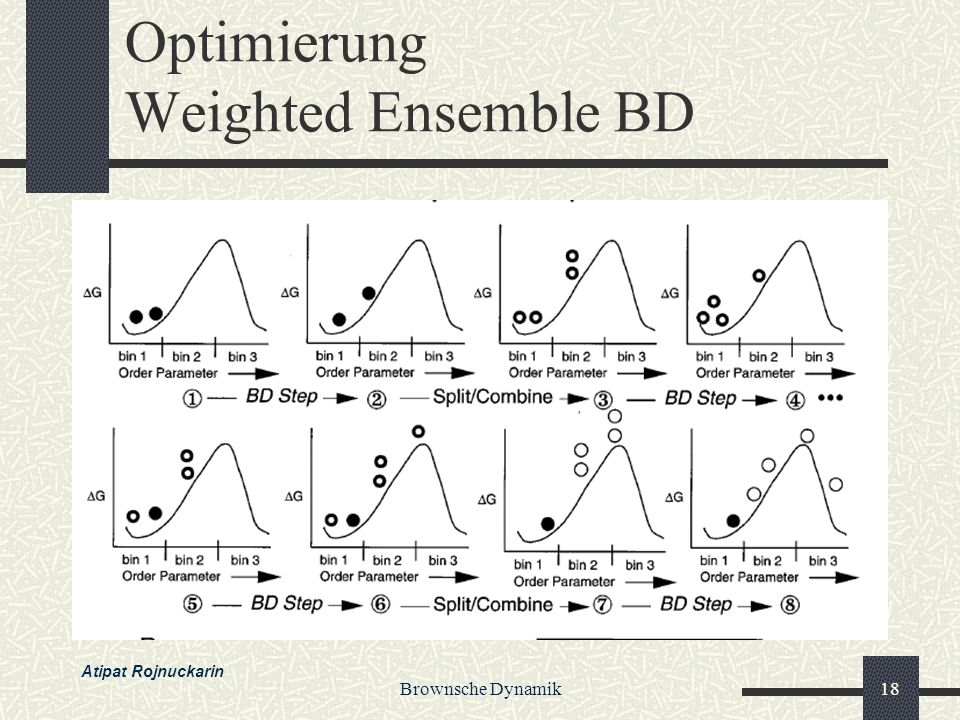 Optimierung Weighted Ensemble BD