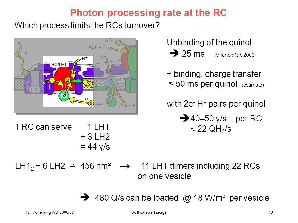 Photon processing rate at the RC