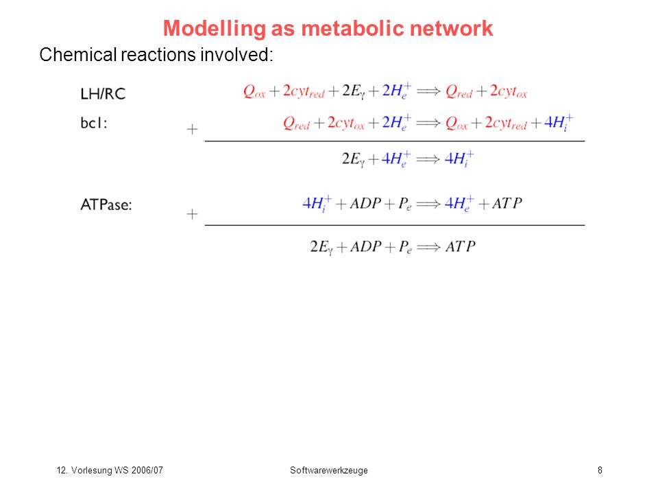 Modelling as metabolic network