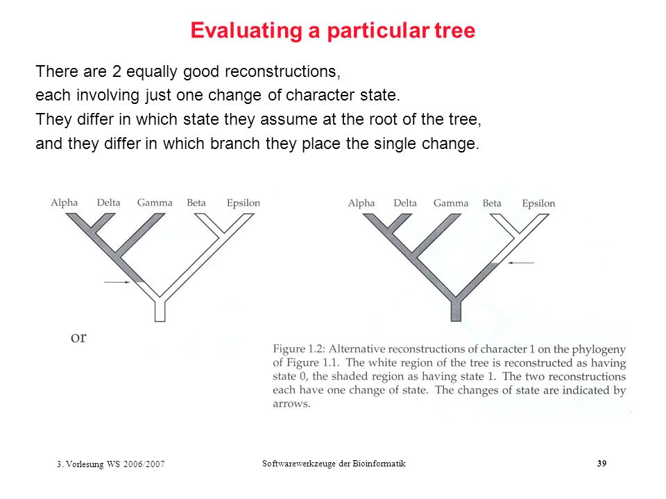 Evaluating a particular tree