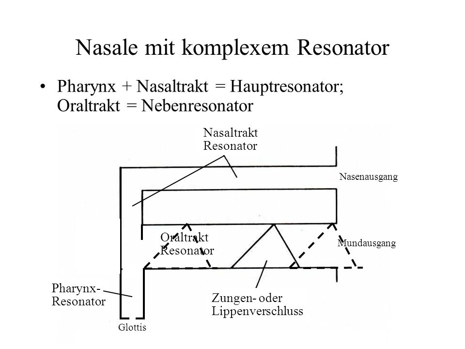 Nasale mit komplexem Resonator