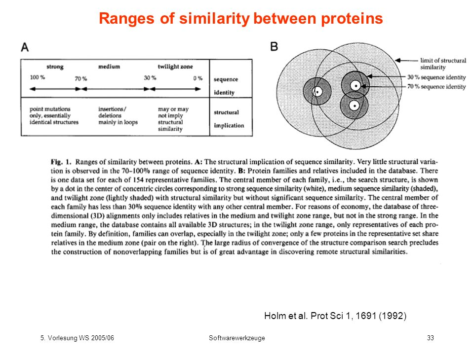 Ranges of similarity between proteins