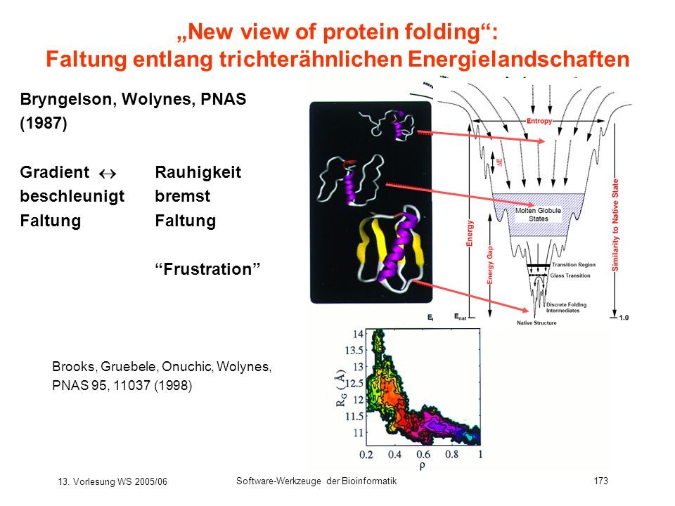 """New view of protein folding :"