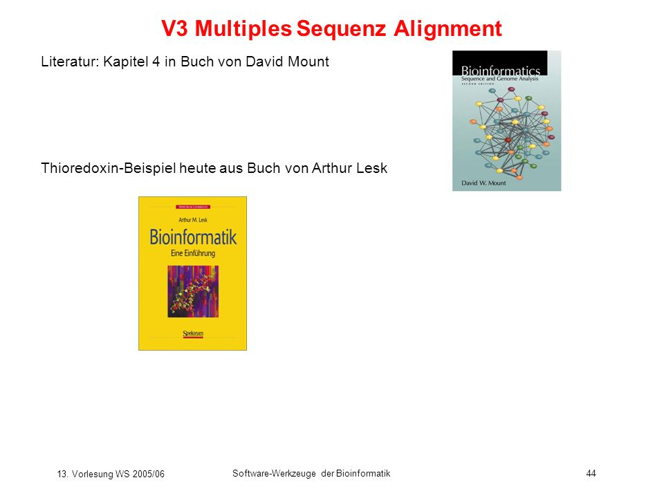 V3 Multiples Sequenz Alignment