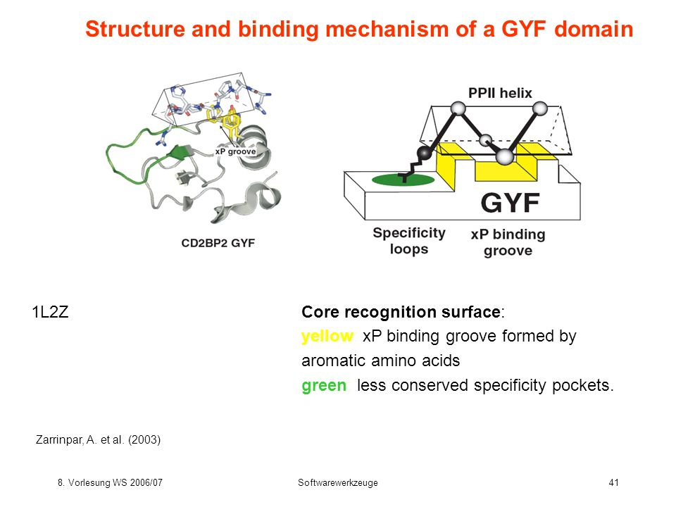 Structure and binding mechanism of a GYF domain