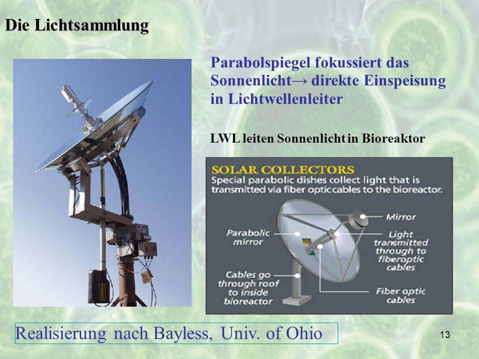 Realisierung nach Bayless, Univ. of Ohio