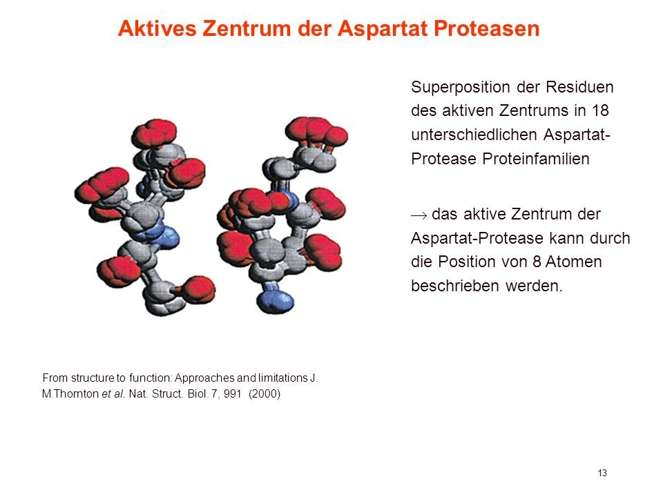 Aktives Zentrum der Aspartat Proteasen