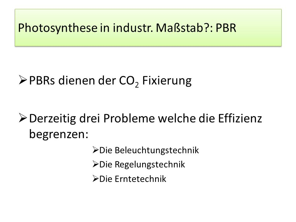 Photosynthese in industr. Maßstab : PBR
