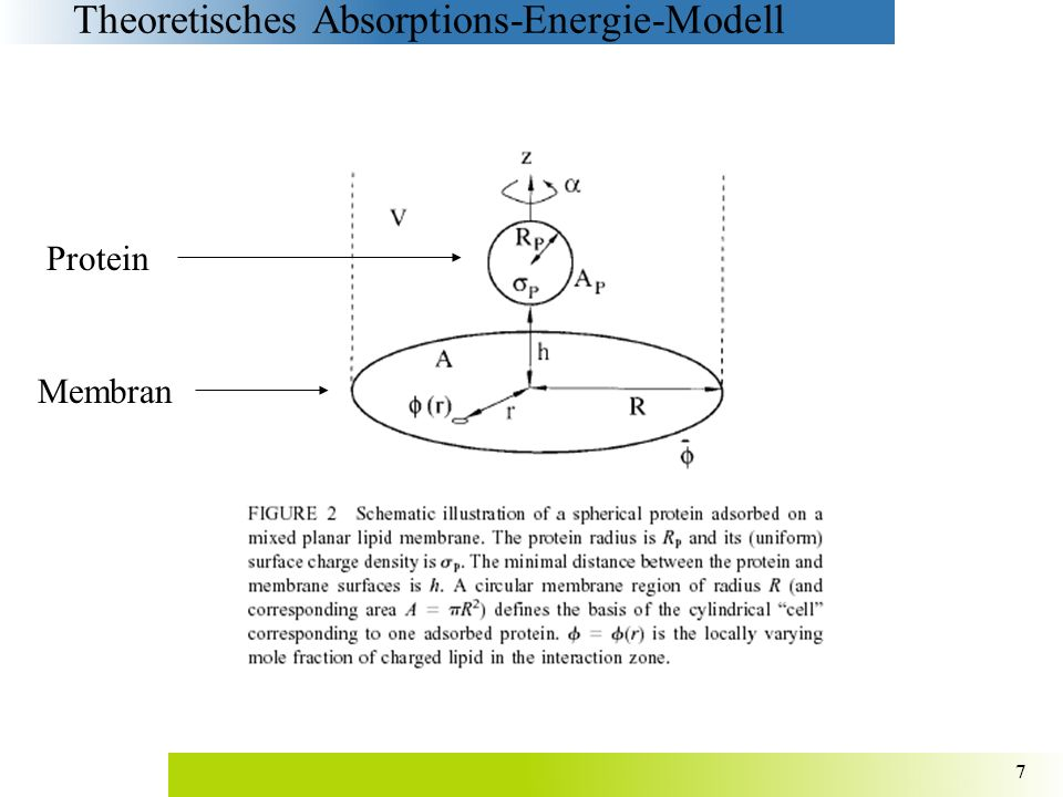 Theoretisches Absorptions-Energie-Modell