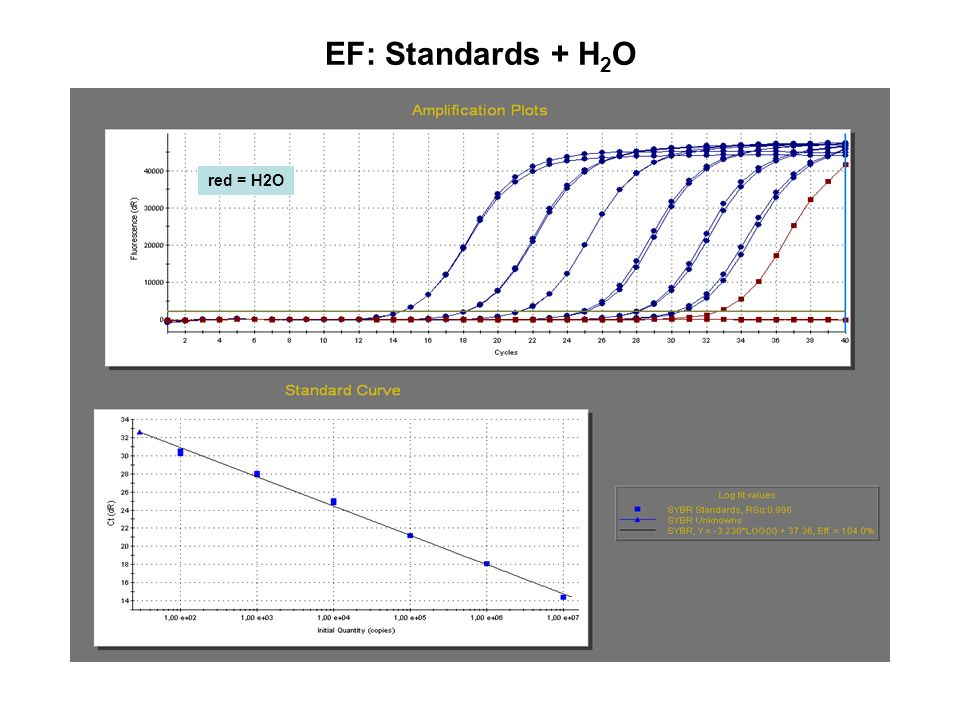 EF: Standards + H2O red = H2O