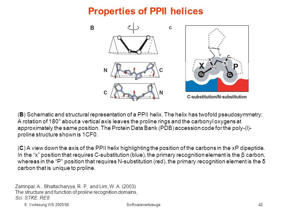 Properties of PPII helices