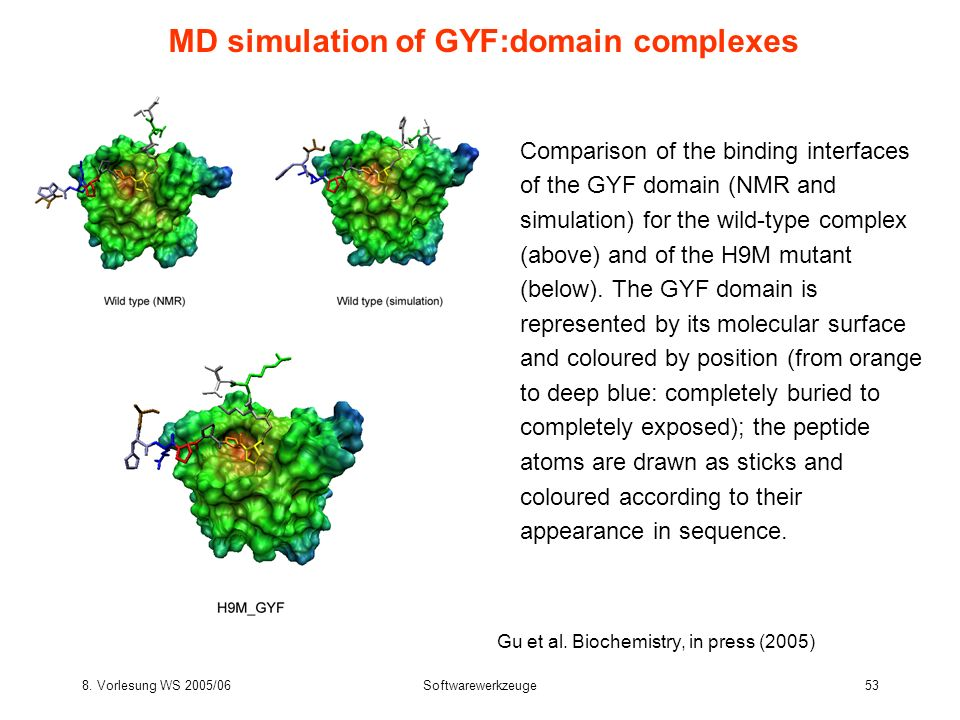MD simulation of GYF:domain complexes