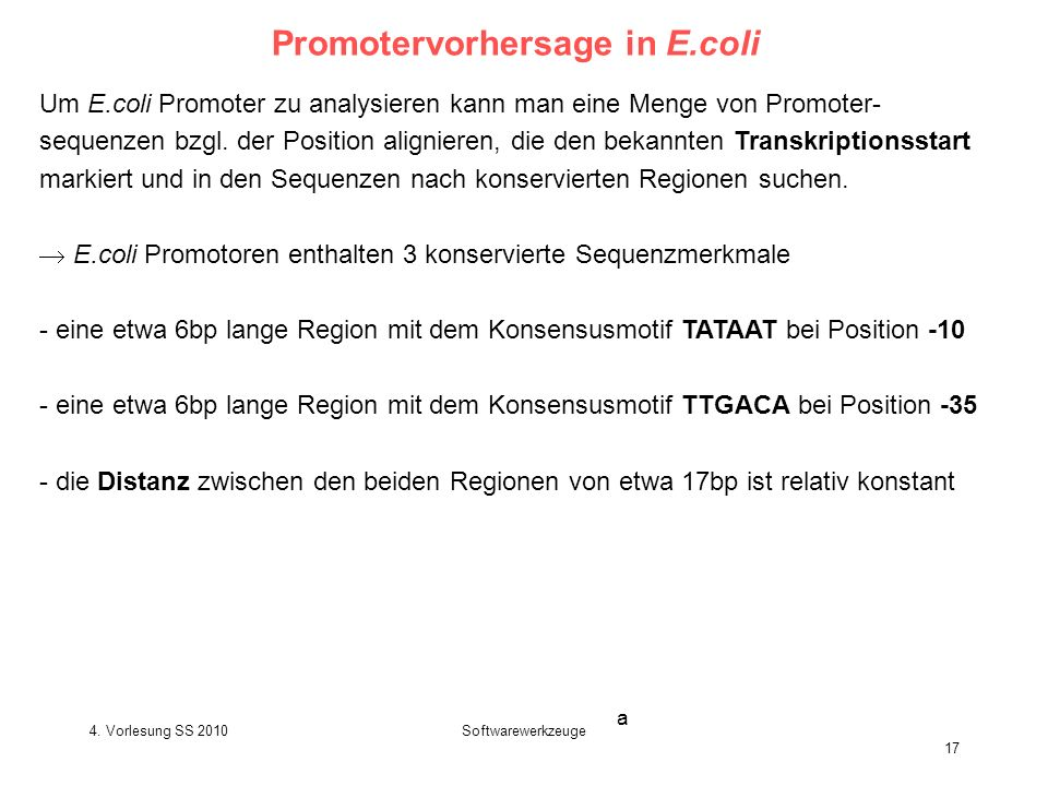Promotervorhersage in E.coli