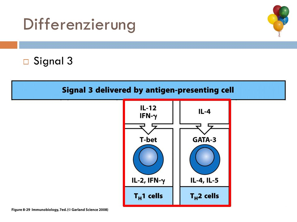 Differenzierung Signal 3