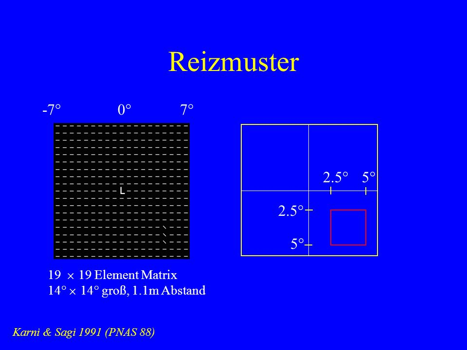 Reizmuster -7° 0° 7° 2.5° 5° 2.5° 5° 19 ´ 19 Element Matrix