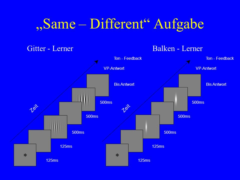 """Same – Different Aufgabe"