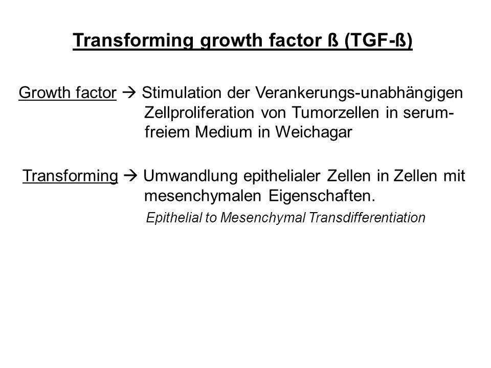 Transforming growth factor ß (TGF-ß)