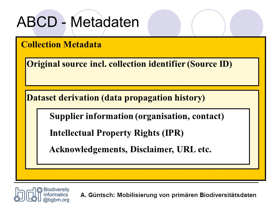 ABCD - Metadaten Collection Metadata