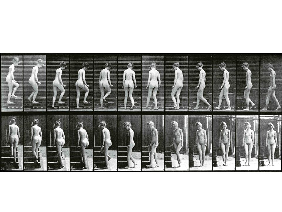 Eadweard Muybridge: Serienfotografie (Turning and Ascending Stairs, 1887)