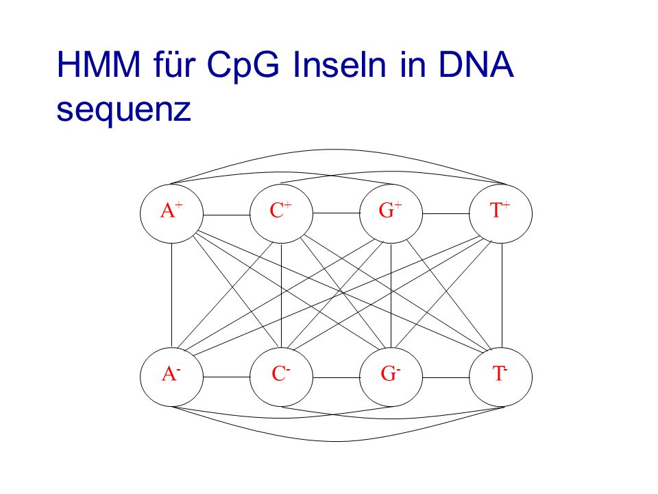 HMM für CpG Inseln in DNA sequenz
