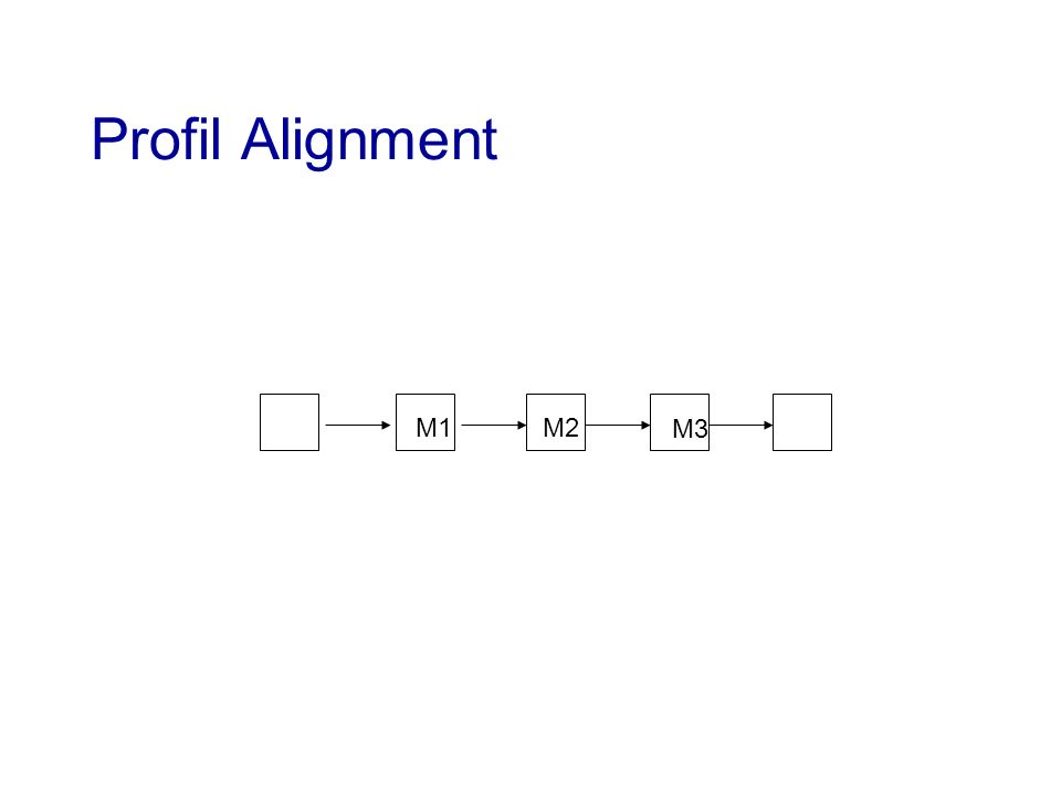 Profil Alignment M1 M2 M3
