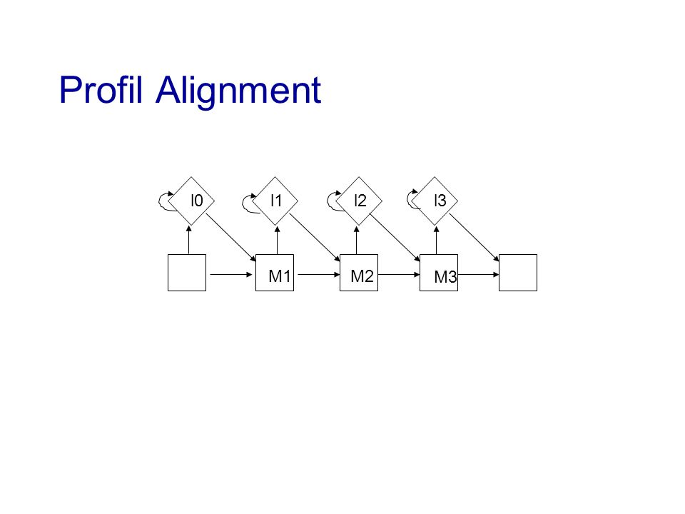 Profil Alignment l0 l1 l2 l3 M1 M2 M3