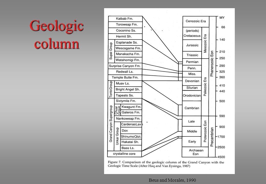 Geologic column Beus and Morales, 1990