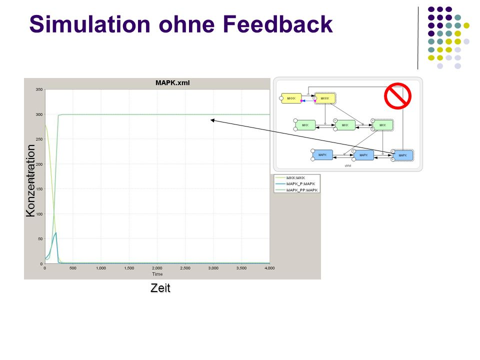 Simulation ohne Feedback