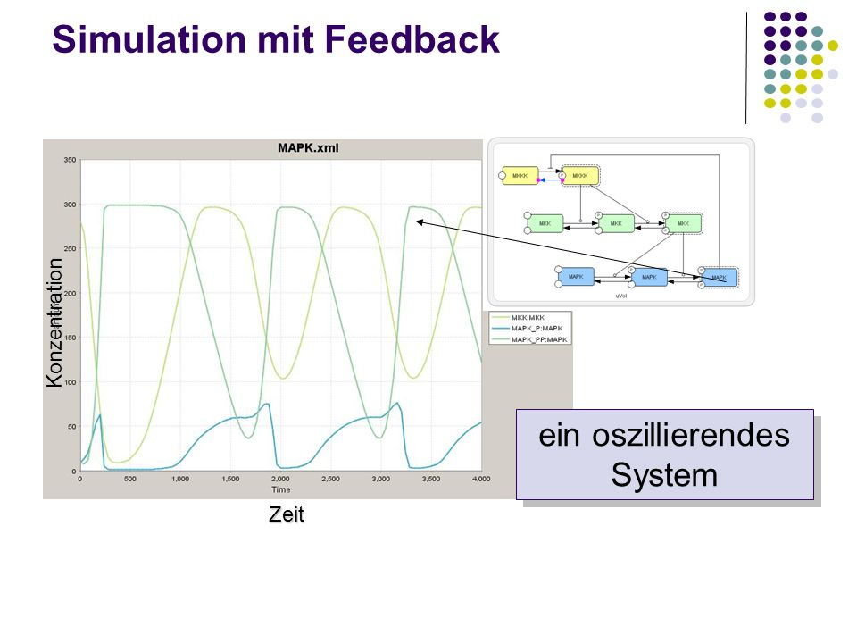 Simulation mit Feedback