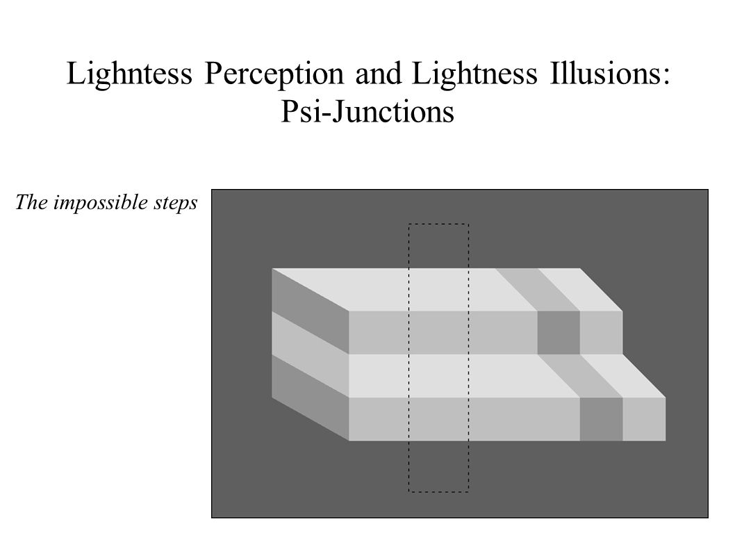 Lighntess Perception and Lightness Illusions: Psi-Junctions