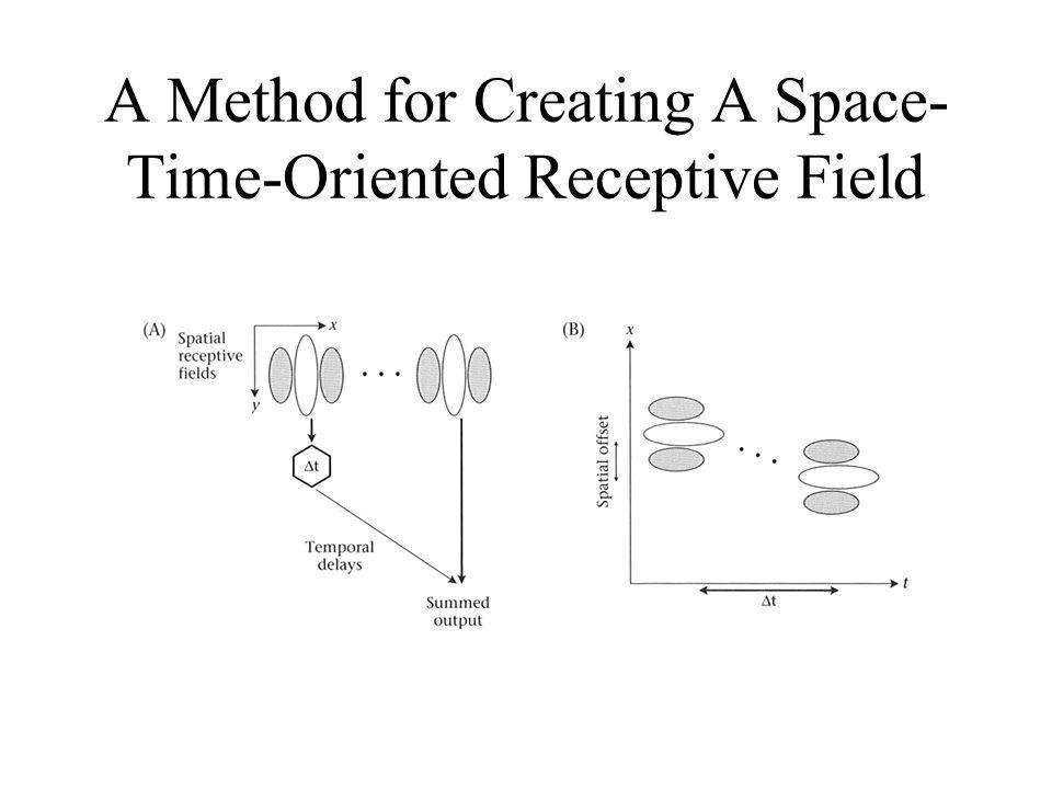 A Method for Creating A Space-Time-Oriented Receptive Field