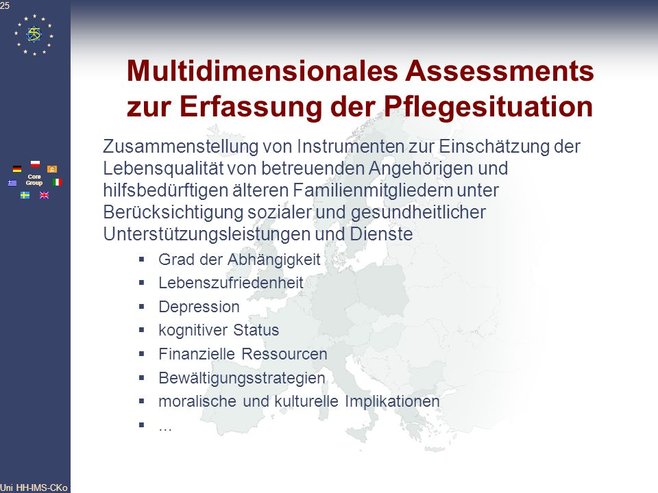 Multidimensionales Assessments zur Erfassung der Pflegesituation
